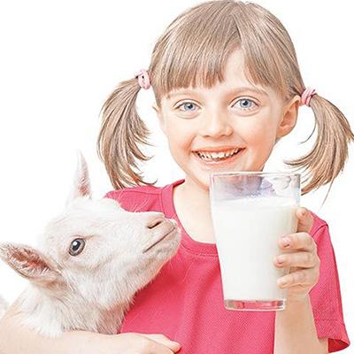Keçi Sütü ve İnek Sütünü Karşılaştırdık!